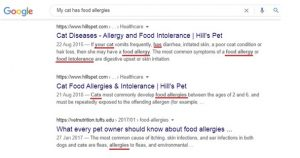 Research the Right Keywords or Phrases