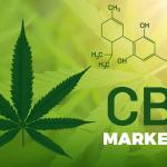 CBD Marketing Guide